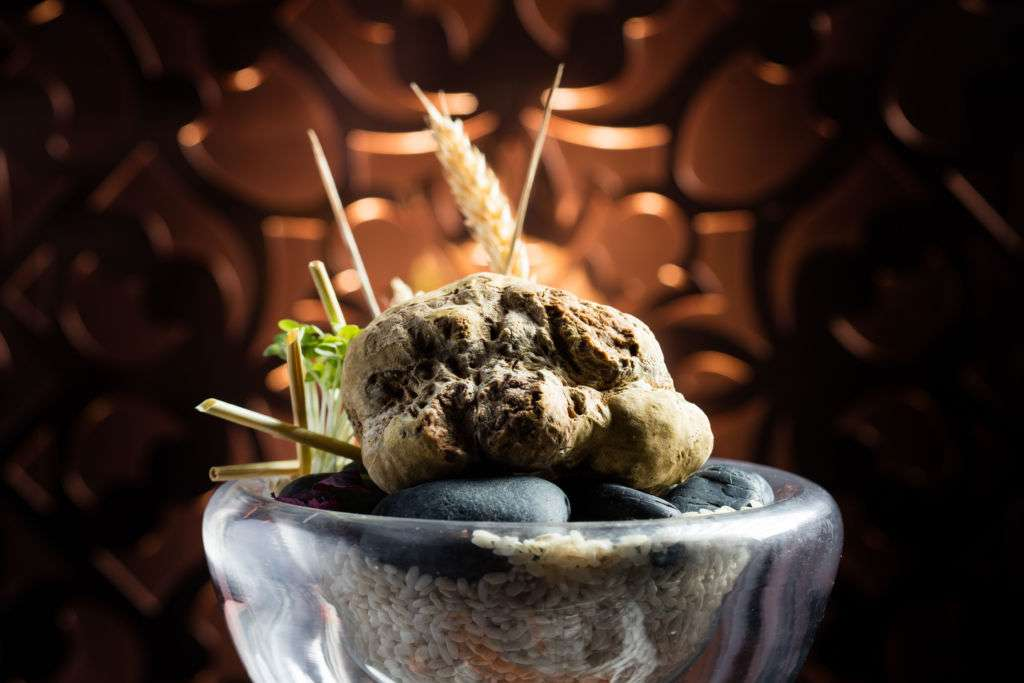 White truffle at Aux Beaux Arts