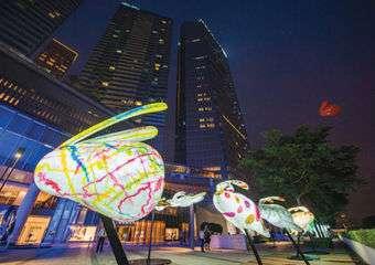 Macau Lantern Festival