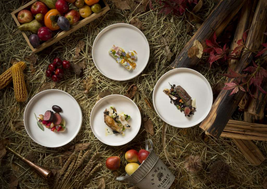 Dishes featuring game and wild mushrooms
