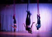Aerial silks warrior pole and aerial studio taipa macau