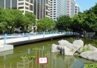 A bridge in Dr. Carlos d'Assumpcao Park