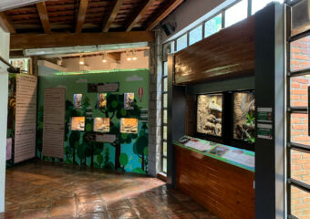 Natural and Agrarian Museum Indoor Exhibitions on the Wall Macau Lifestyle