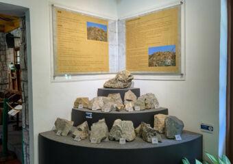 Natural and Agrarian Museum Indoor Stones Macau Lifestyle