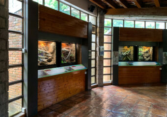 Natural and Agrarian Museum Indoor Windows Macau Lifestyle