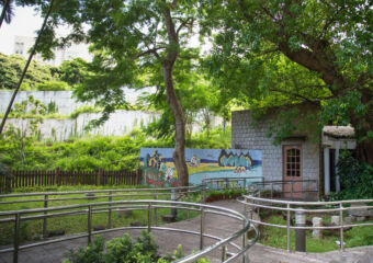 Natural and Agrarian Museum Outdoor Drawings on the Wall Macau Lifestyle
