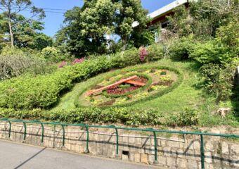 Flora Garden garden clock_