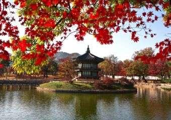 Park in Seoul, South Korea