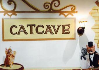 Cat Cave Cafe