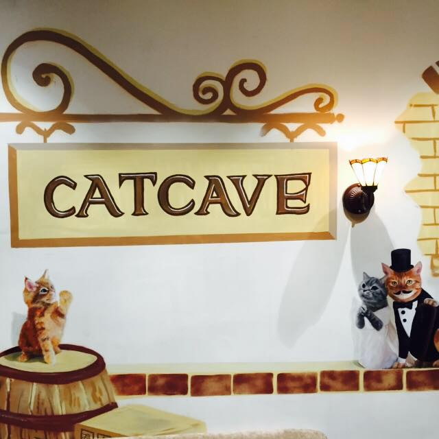 Cat Cave Cafe