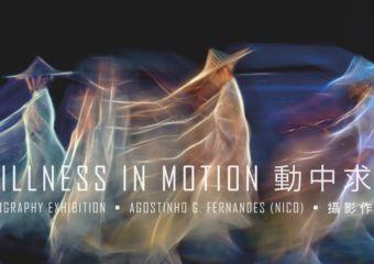 Stillness in Motion, Agostinho