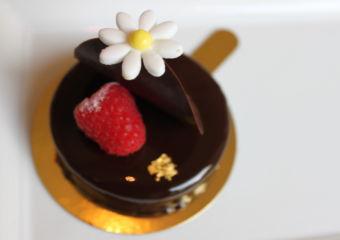 grand lapa cake chocolate lemon tart
