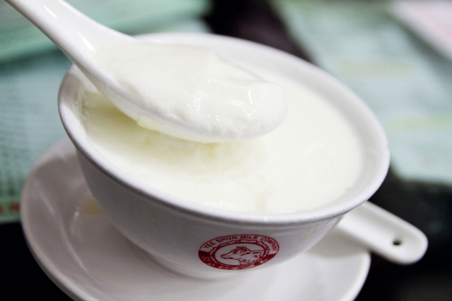Macau dishes steamed milk pudding