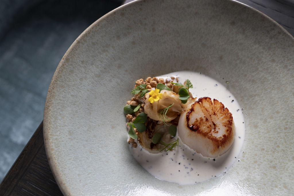 Pan fried scallops at the statement