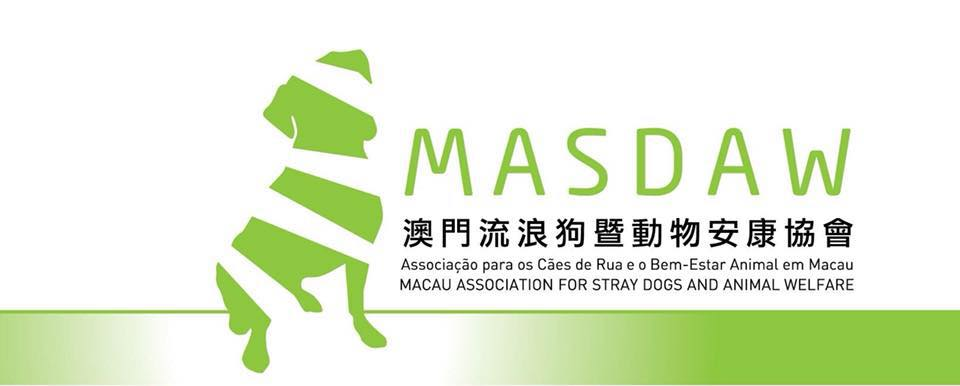 masdaw animal shelter how to help animals in macau lifestyle