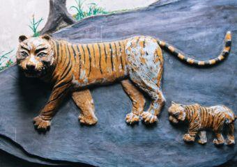 Tam Kuang Temple_tiger