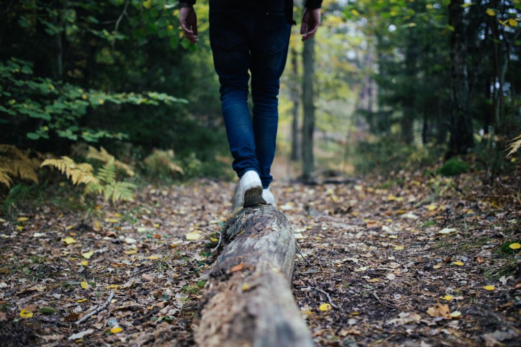 healthy new year Person walking on log in woods