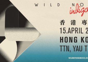 wild nothing concert banner