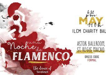 flamenco night