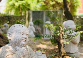 Kun Iam Temple Garden Buddhas Close Up