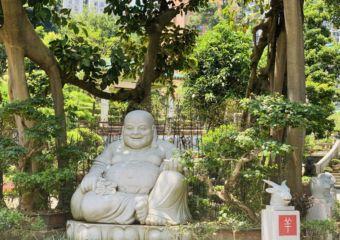 Kun Iam Temple Lovers Trees Close Up Buddha