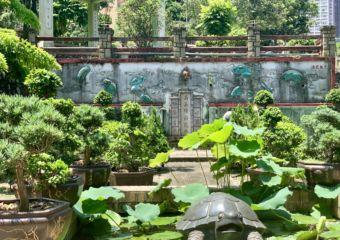 Kun Iam Temple Back Garden