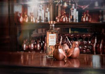 elyx vodka vida rica bar