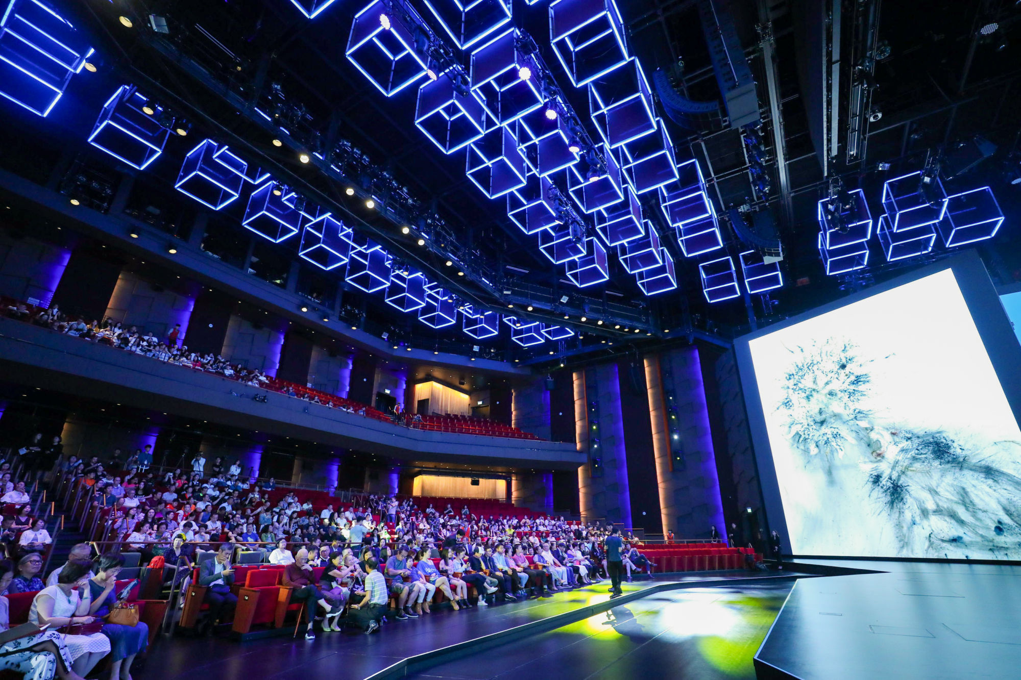 Cai Guo-Qiang Screening of Sky Ladder MGM Cotai theatre