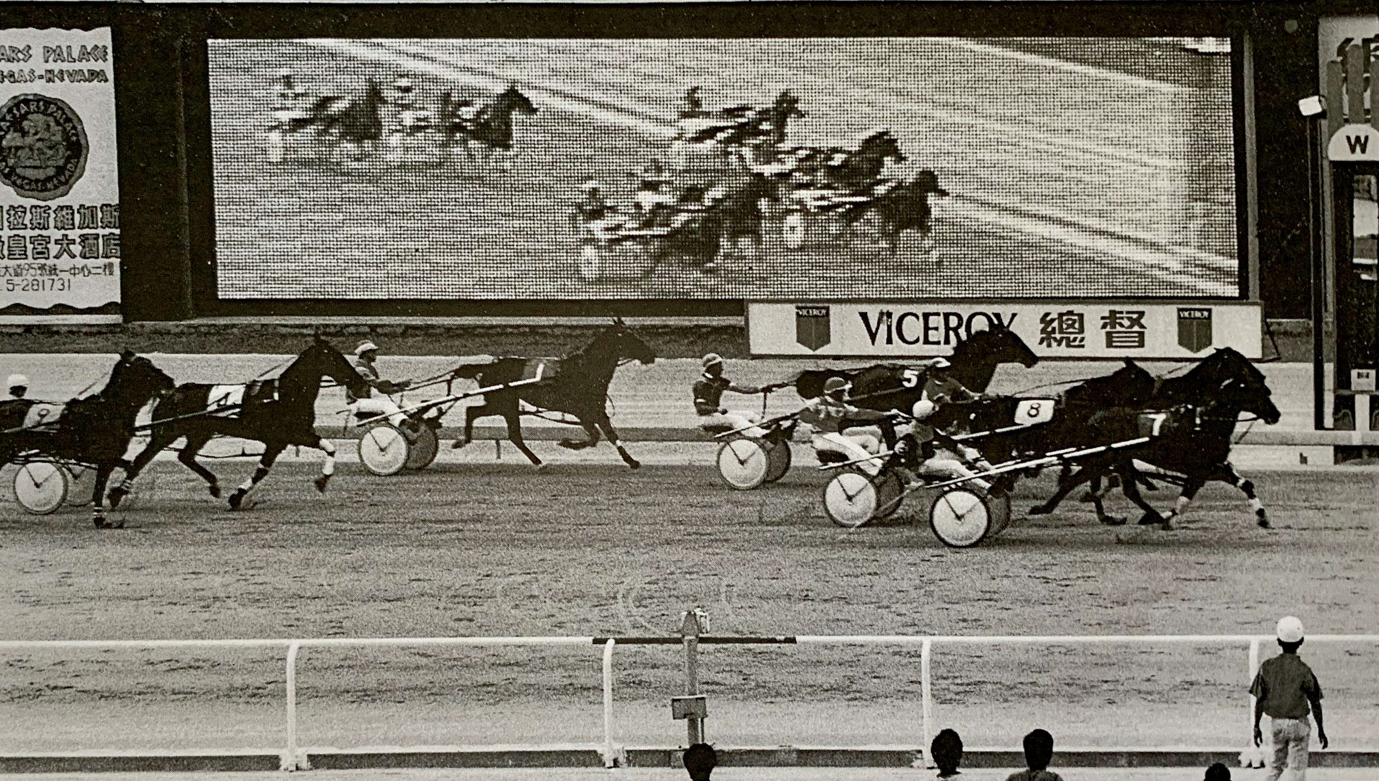 Jockey Club with Harness Cars and Horses