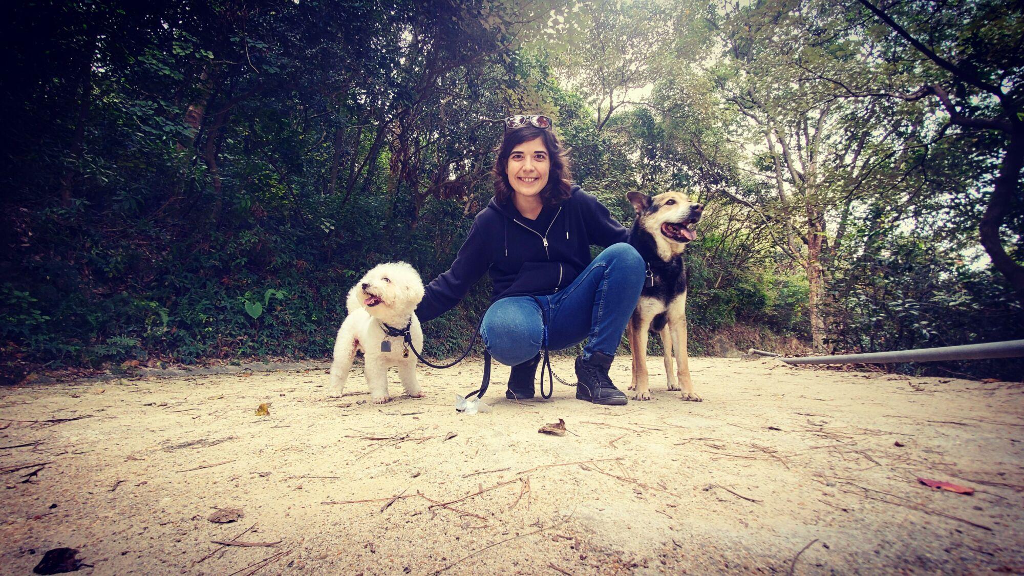 walking dogs in coloane pet parent guide macau
