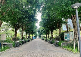 Dr Carlos DAssumpcao Garden Lawned Corridor Macau Lifestyle
