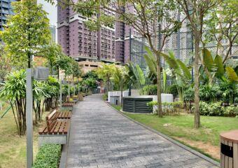 Taipa Central Park Green Area Path Macau Lifestyle