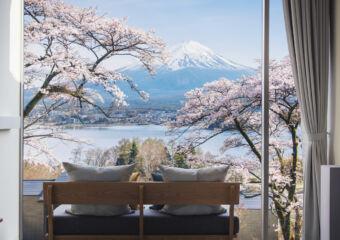 Macau LIfestyle HOSHINOYA Fuji cherry blossom