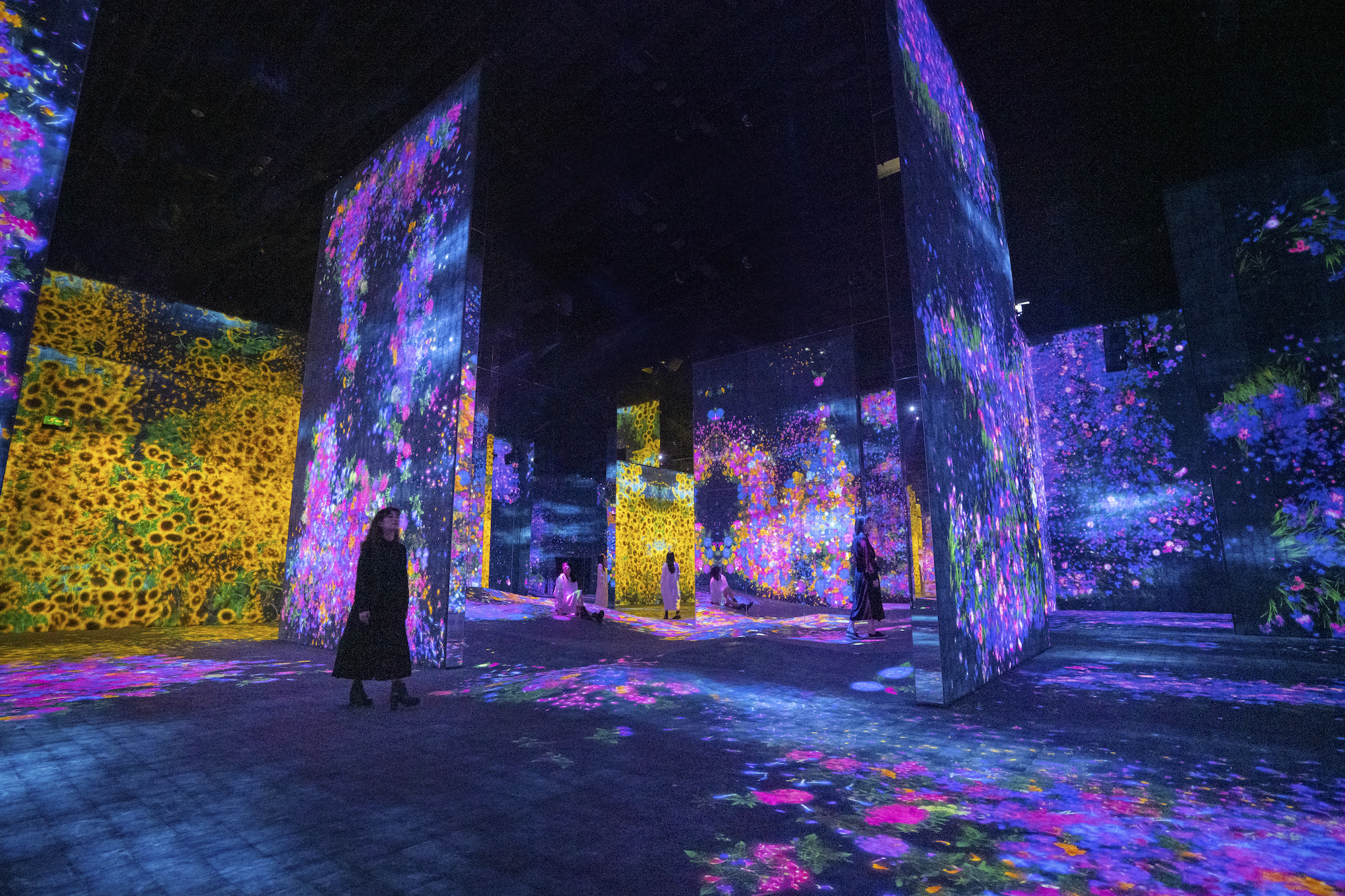 Valley of Flowers and People Lost, Immersed and Reborn_Teamlab Credits