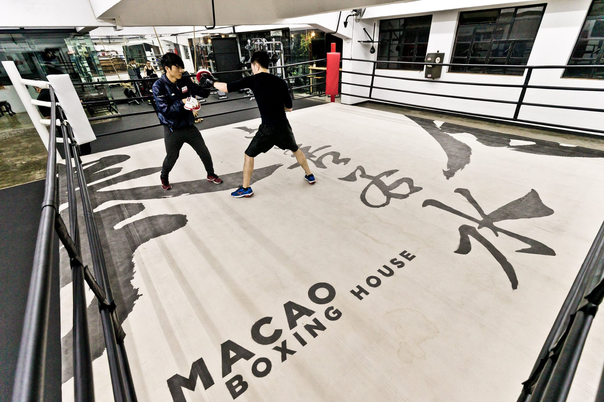 macau boxing house martial arts