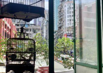 Long Wa Tea House Indoor Bird Cages on the Window Macau Lifestyle