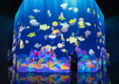 teamLab Macau Interactive Digital Installatio Sketch Ocean
