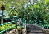 Mong Ha Municipal Park Stairs Macau Lifestyle
