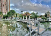 Flower City Garden Inside Lakes Panoramic View Macau Lifestyle