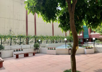 Macao Polytechnic Institute Indoor with Trees Macau Lifestyle