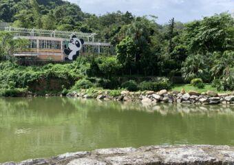 Seac Pai Van Park Macau Giant Panda Pavilion fish pond