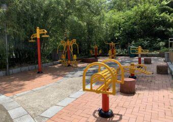 Seac Pai Van Park Macau Giant Panda Pavilion outdoor fitness equipment
