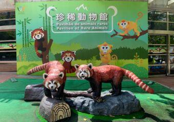 Seac Pai Van Park rare animals pavilion entrance