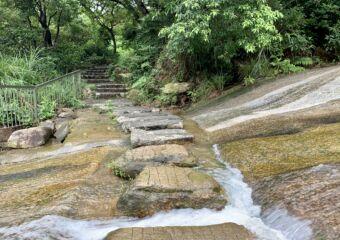 Seac Pai Van Park trail stream