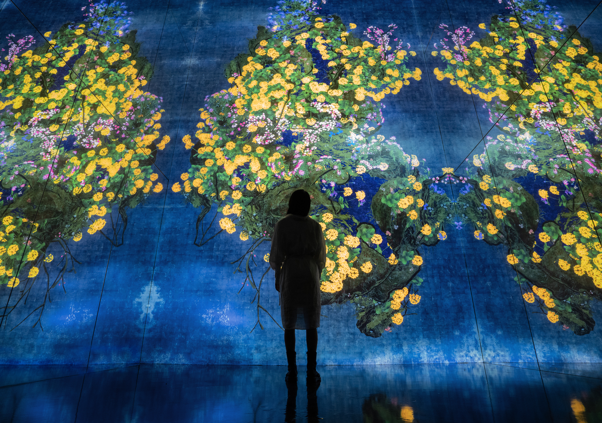 teamLab Supernature macao_Continuous Life and Death at the Crossover of Eternity