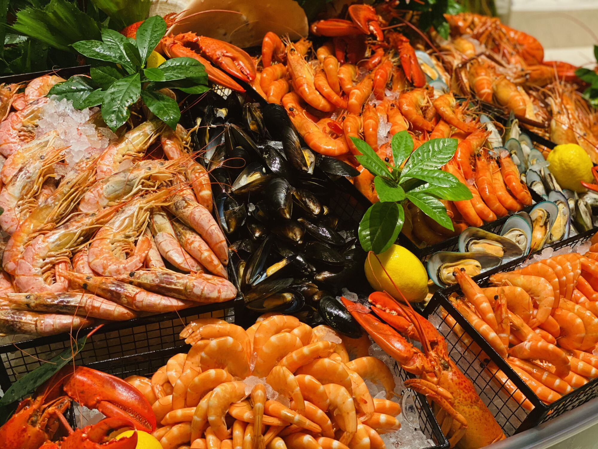 Christmas Offers Sofitel Macau At Ponte 16 seafood mistral Where to Eat Macau December