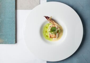 The Manor Stories of the Sea Seventh Chapter John Dory, baby cress, endive and vandouvan, roasted almond